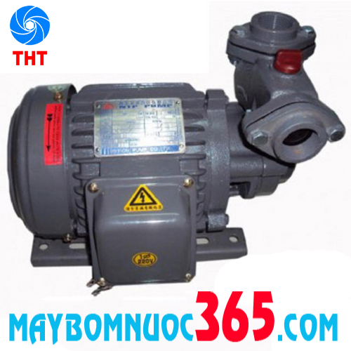 Máy bơm nước bánh răng đẩy cao vỏ gang đầu gang NTP HCP225-1.25 26
