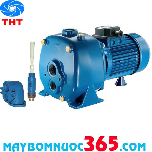 Máy bơm nước dân dụng tự hút Pentax MBT 300 3HP