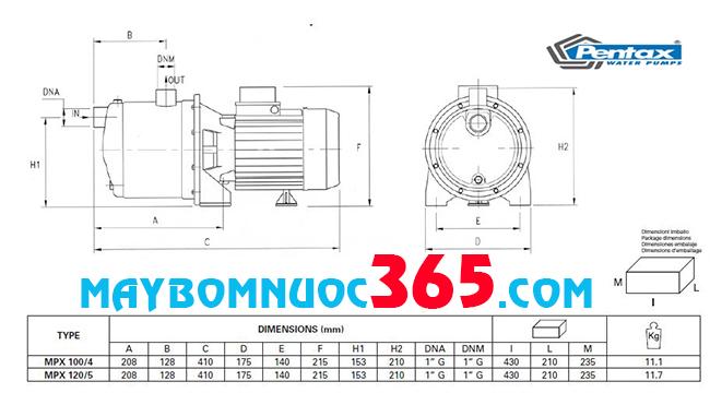 Sơ đồ cấu tạo máy bơm dân dụng đầu inox Pentax MPXT 120/5 1.2HP