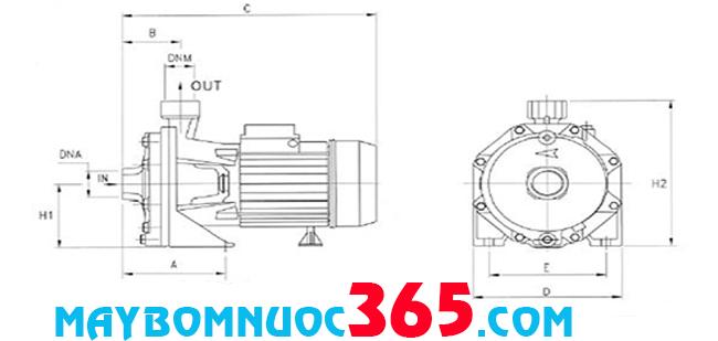 Sơ đồ cấu tạo máy bơm đẩy cao Pentax CBT 600 5.5HP