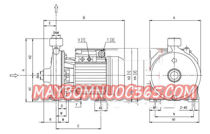 Sơ đồ lưu lượng máy bơm ly tâm trục ngang đầu gang Ebara CMA 0.50M