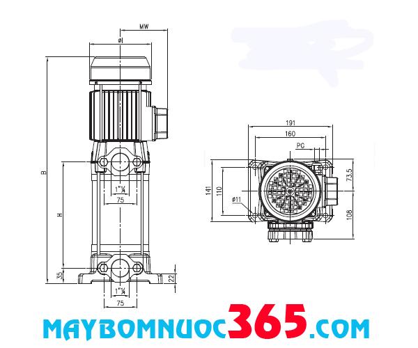 Sơ đồ cấu tạo máy bơm trục đứng nhiều tầng cánh có vỏ bơm bằng inox EVMS 15 11N5Q1BEGE/11 15HP