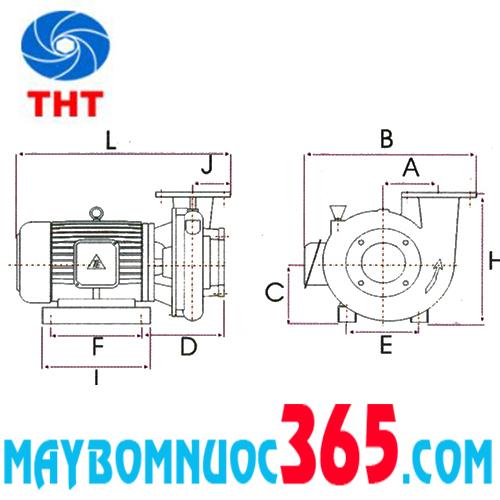 Sơ đồ cấu tạo máy bơm ly tâm trục ngang đầu gang dạng xoáy NTP HVP280-12.2 205 3HP